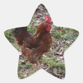 Cockerel Stickers