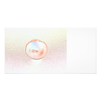 cockle shell invert outline seashell design custom photo card