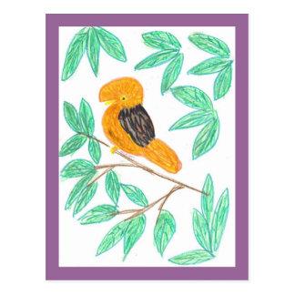 CockOdaRock Parrot Art Post Card