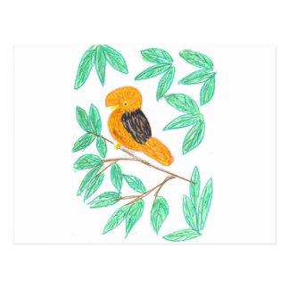 CockOdaRock Parrot Art Post Cards