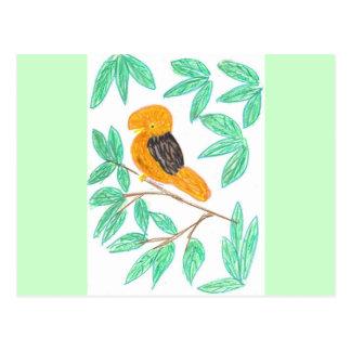 CockOdaRock Parrot Art Postcard