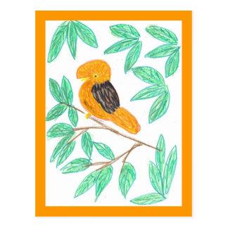CockOdaRock Parrot Art Postcards