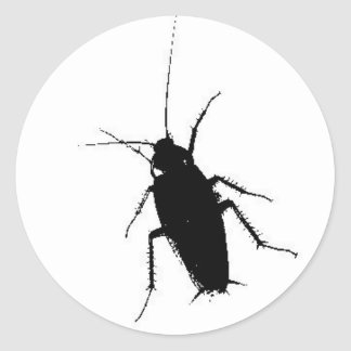 cockroach classic round sticker