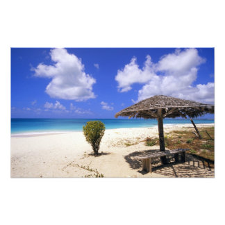 Coco Point Beach, Barbuda, Antigua Photo