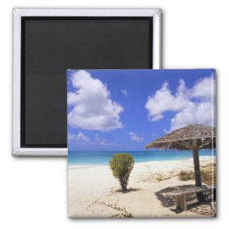 Coco Point Beach, Barbuda, Antigua Square Magnet