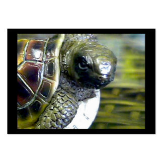 Cocoa Beach Fl Turtle Egg Art1 jGibney ACT-Open Ed Pack Of Chubby Business Cards