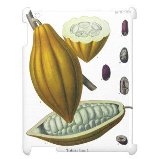 Cocoa bean vintage illustration case iPad case