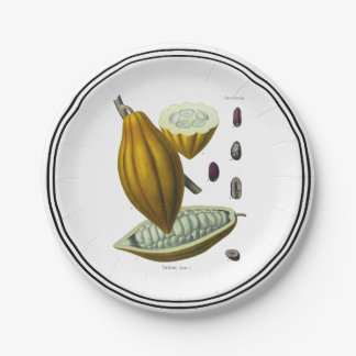 Cocoa bean vintage illustration paper plate 7 inch paper plate