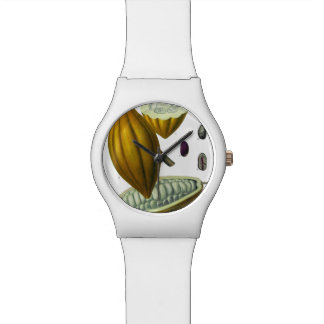 Cocoa bean vintage illustration watch