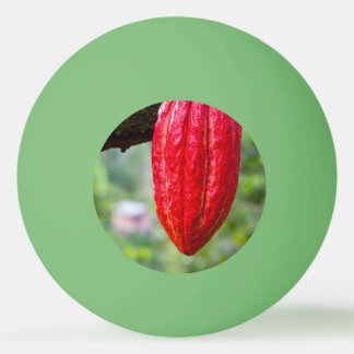 cocoa pod red ping pong ball