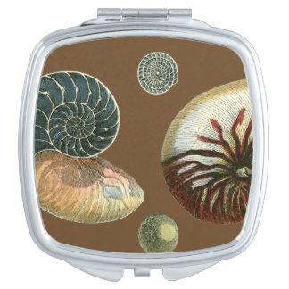 Cocoa Shell Compact Mirrors