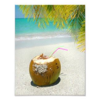 Coconut drink on tropical beach with palm leaves photograph