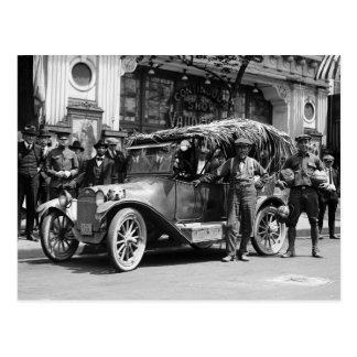 Coconut Drove: 1922 Postcard