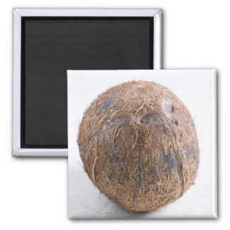 Coconut For use in USA only.) Square Magnet