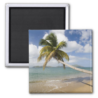 Coconut Grove Beach at Cades Bay, with St. Square Magnet