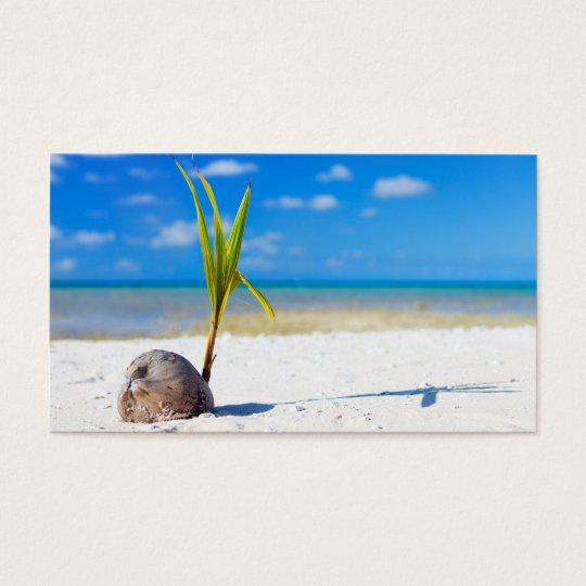 Coconut on the beach business card