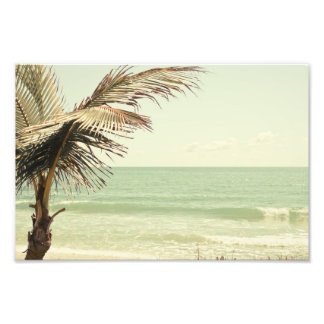 Coconut Palm and Pastel Beach Photography Photographic Print
