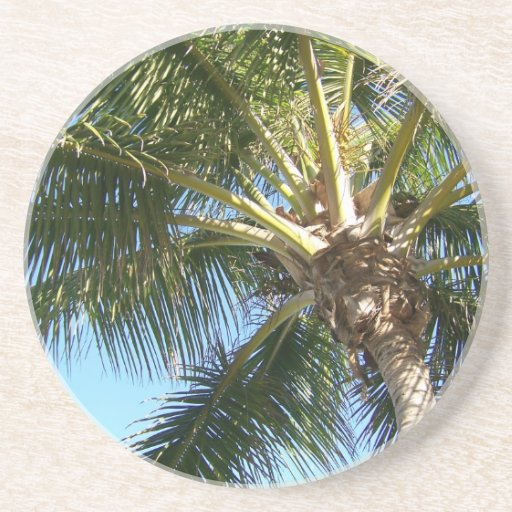 Coconut Palm Tree Drink Coaster