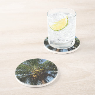 Coconut Palm Tree Beverage Coaster