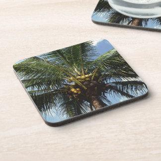 Coconut Palm Tree Beverage Coasters