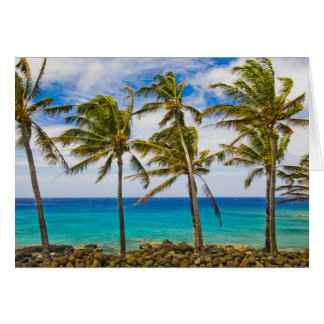 Coconut palm trees (Cocos nucifera) swaying in Card