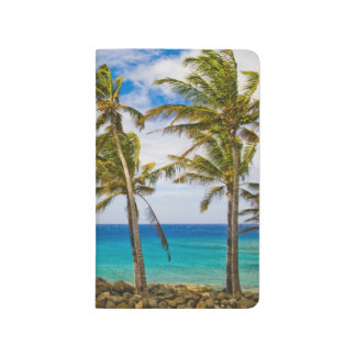 Coconut palm trees (Cocos nucifera) swaying in Journal