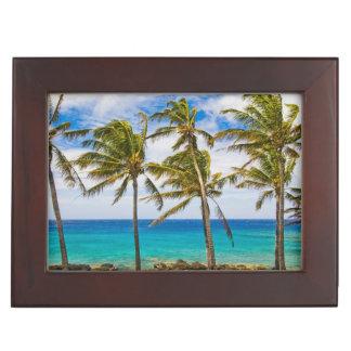 Coconut palm trees (Cocos nucifera) swaying in Keepsake Boxes