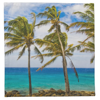 Coconut palm trees (Cocos nucifera) swaying in Napkin