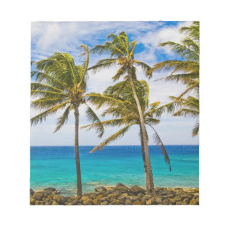 Coconut palm trees (Cocos nucifera) swaying in Notepad