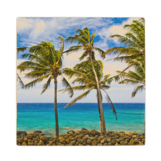 Coconut palm trees (Cocos nucifera) swaying in Wood Coaster