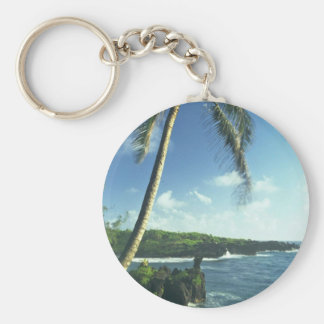 Coconut Tree Alone Among Smaller Plants Key Chains