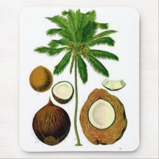 Coconut Tree Botanical Illustration Mouse Mat