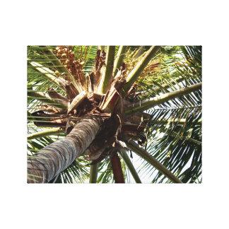 Coconut Tree - Canvas Art - Caribbean Island