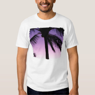 Coconuts in the Wind Shirts