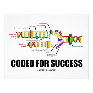 Coded For Success (DNA Replication) Flyer