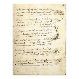 Codex on the flight of birds by Leonardo da Vinci Postcard