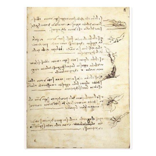 Codex on the flight of birds by Leonardo