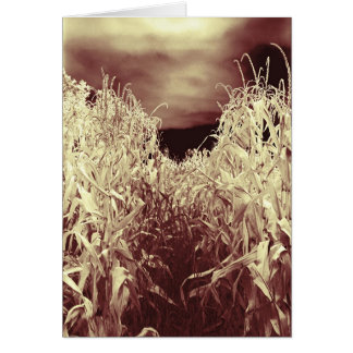 Codgers in the Corn Card