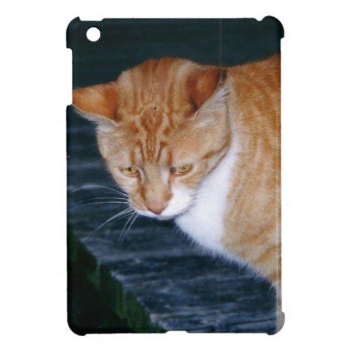 Cody the Cat iPad Mini Cases