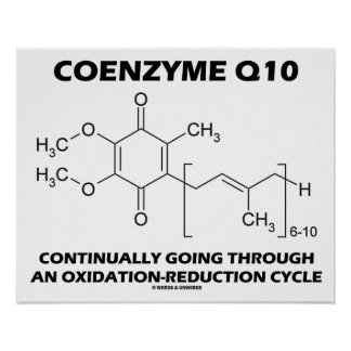 Coenzyme Q10 Continually Oxidation-Reduction Cycle Poster