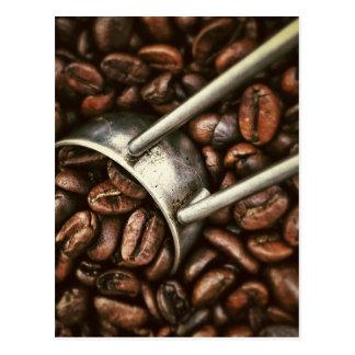 Coffee Bean Postcard