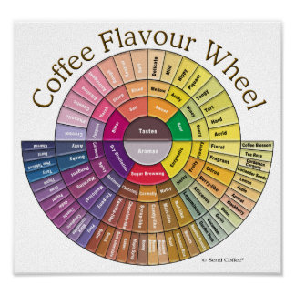 Coffee Flavour Wheel Wall Art
