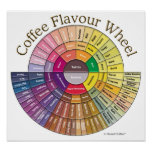 Coffee Flavour Wheel Wall Art - Large