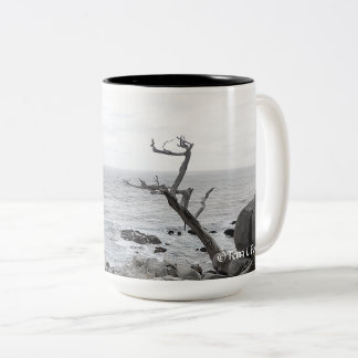 Coffee Mug - Coastal Hwy 1 California