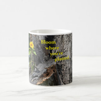 coffee mug with flower growing out of tree