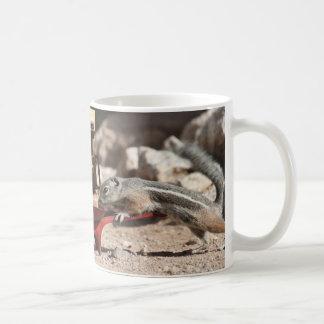 Coffee Squirrels Mug