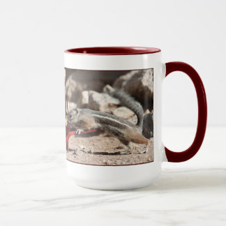 Coffee Squirrels Ringer Mug