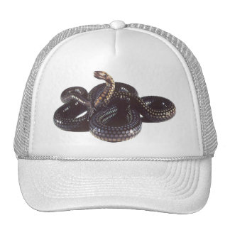 Coiled and Ready to Strike Snake Cap