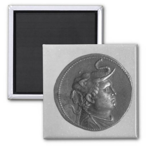 Coin minted by Ptolemy I Fridge Magnet