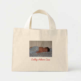 Colby Adam Cox Tote Mini Tote Bag